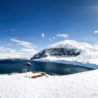 南极洲虚拟旅游