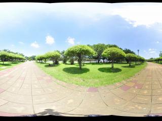 万绿公园虚拟旅游