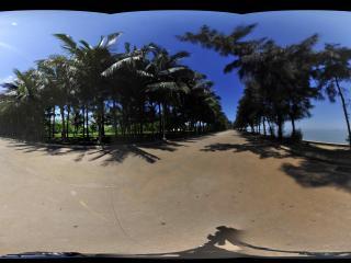 海口万绿公园2全景