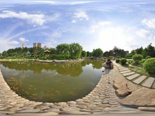 长春市 牡丹园 NO .2