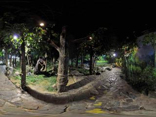 吉林省自然博物馆 NO.3