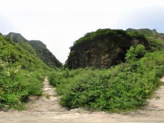 北京 野山峡 NO.7
