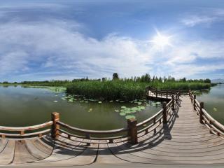 北京 野鸭湖 NO.14