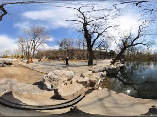 北京动物园-湖边