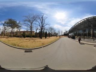 北京动物园-猴山