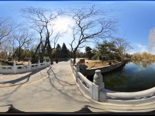 北京动物园-磊桥