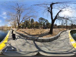 北京动物园-水禽湖