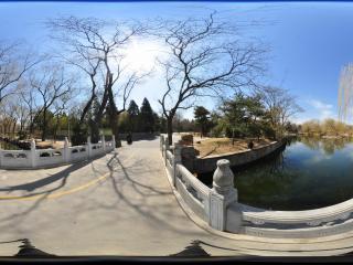 动物园'磊桥