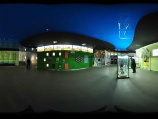 动物园'猫科动物展厅