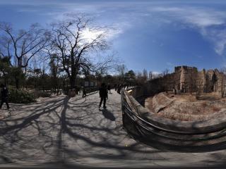 动物园狮虎山