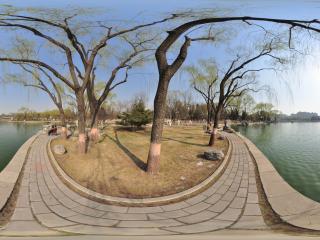 北京龙潭公园NO.5