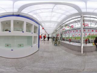 长春农博园 NO.19