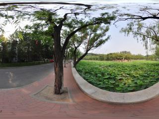 南开大学NO.2