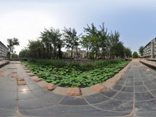南开大学NO.9