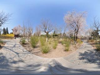 宣武艺园小道