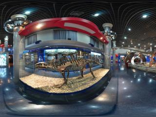自然博物馆恐龙骨架标本