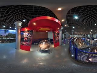自然博物馆恐龙蛋标本