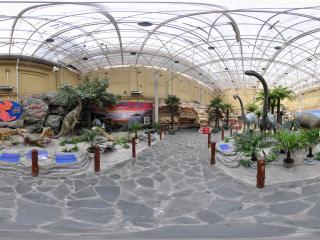自然博物馆恐龙标本模型区