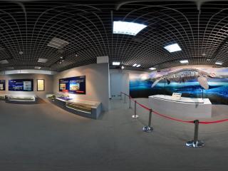 自然博物馆鲸鱼化石