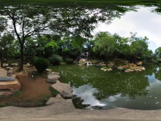 报晓园湖边琴韵之夏景一