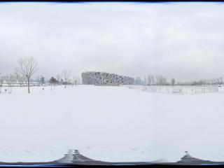 雪中鸟巢景观 NO.11