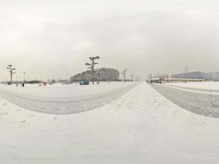雪中鸟巢景观 NO.8