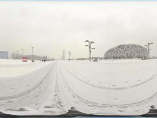 雪中鸟巢景观 NO.7