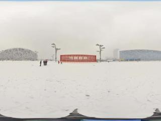 雪中鸟巢景观 NO.6