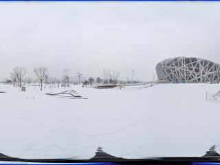 雪中鸟巢景观 NO.4