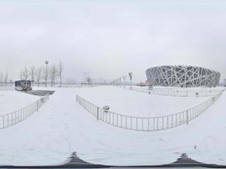 雪中鸟巢景观 NO.3