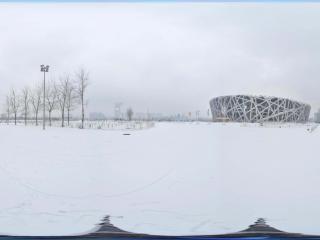 雪中鸟巢景观 NO.2