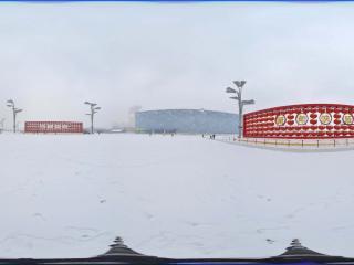 雪中鸟巢景观 NO.1