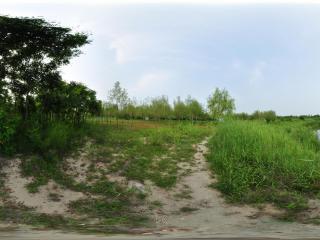金牛湖湿地 NO.2