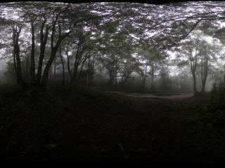 峨眉山雷洞坪到接引殿的山间妖雾