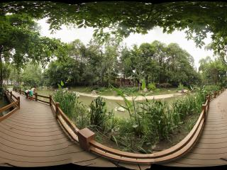 人民公园虚拟旅游