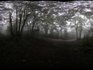峨眉山雷洞坪到接引殿的山间妖雾全景