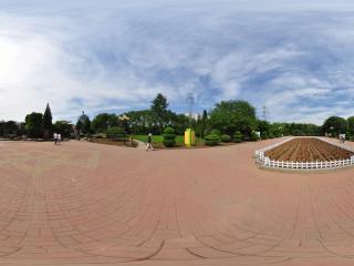 葫芦岛龙湾公园夏景之花之魅