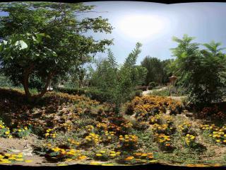 兰州莫高窟前木土佛龛附近的花园
