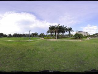 三亚白鹭公园草坪