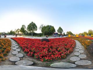 保定市植物园花海长廊全景