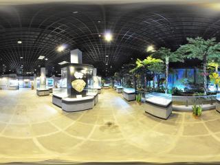 三亚大小洞天室内展览