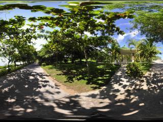 三亚天涯海角热带植物