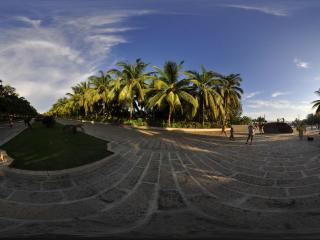 三亚天涯海角夕阳下的椰树林