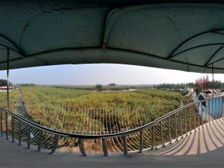 白洋淀观景台