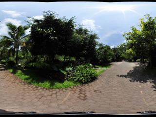 三亚呀诺达热带雨林小路