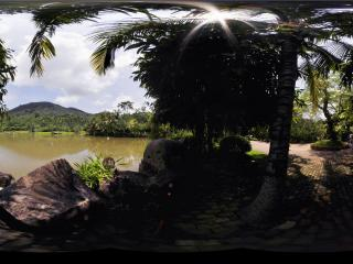 三亚呀诺达热带雨林湖水
