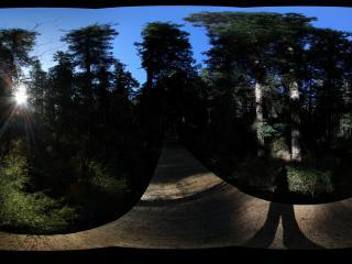 九寨沟日出光芒全景——九寨沟原始森林景点早晨的日出。
