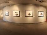 广州美术学院现代画展