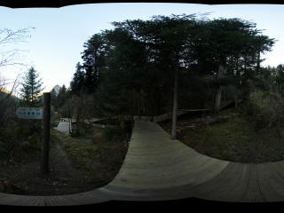 九寨沟原始森林公园通向观景台的路