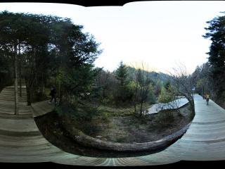九寨沟原始森林公园
